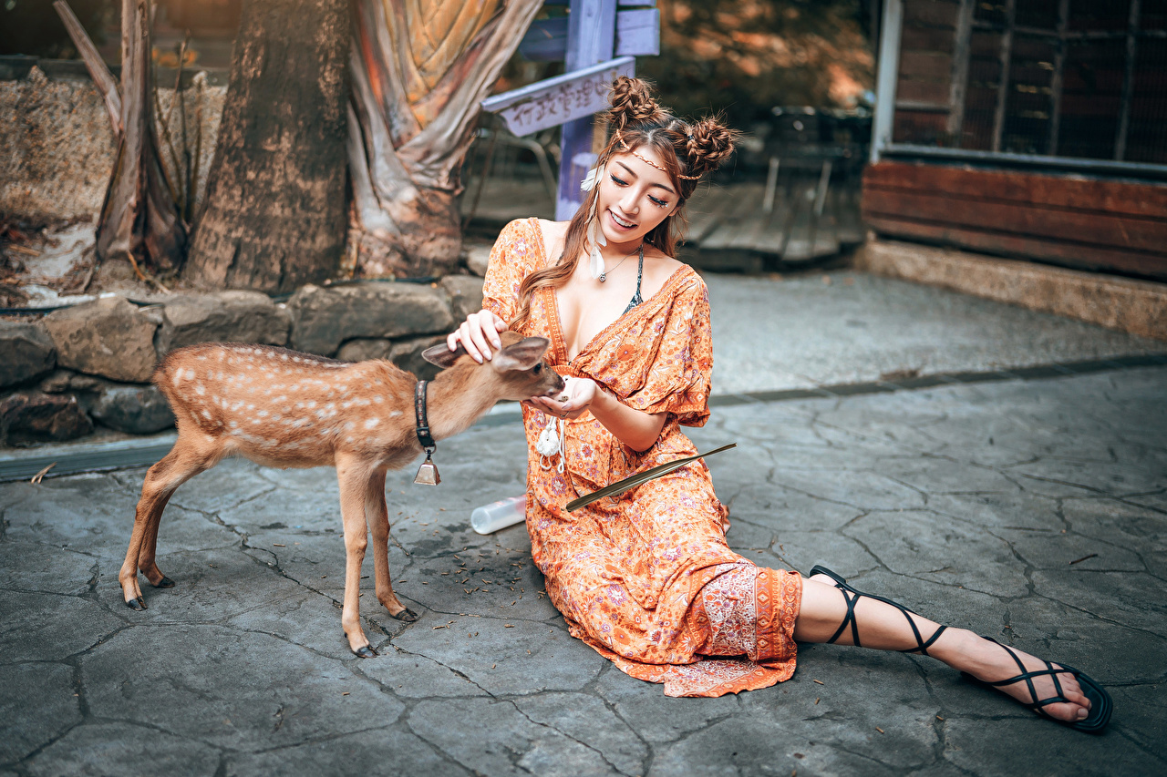 Photo Deer Cubs Smile female Asian sit animal frock Girls young woman Asiatic Sitting Animals gown Dress