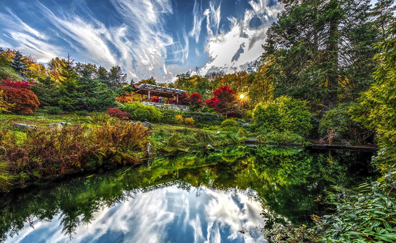 Desktop Wallpapers Rays of light Seattle USA Kubota Garden Nature Sky Pond Gardens Bush Trees Shrubs