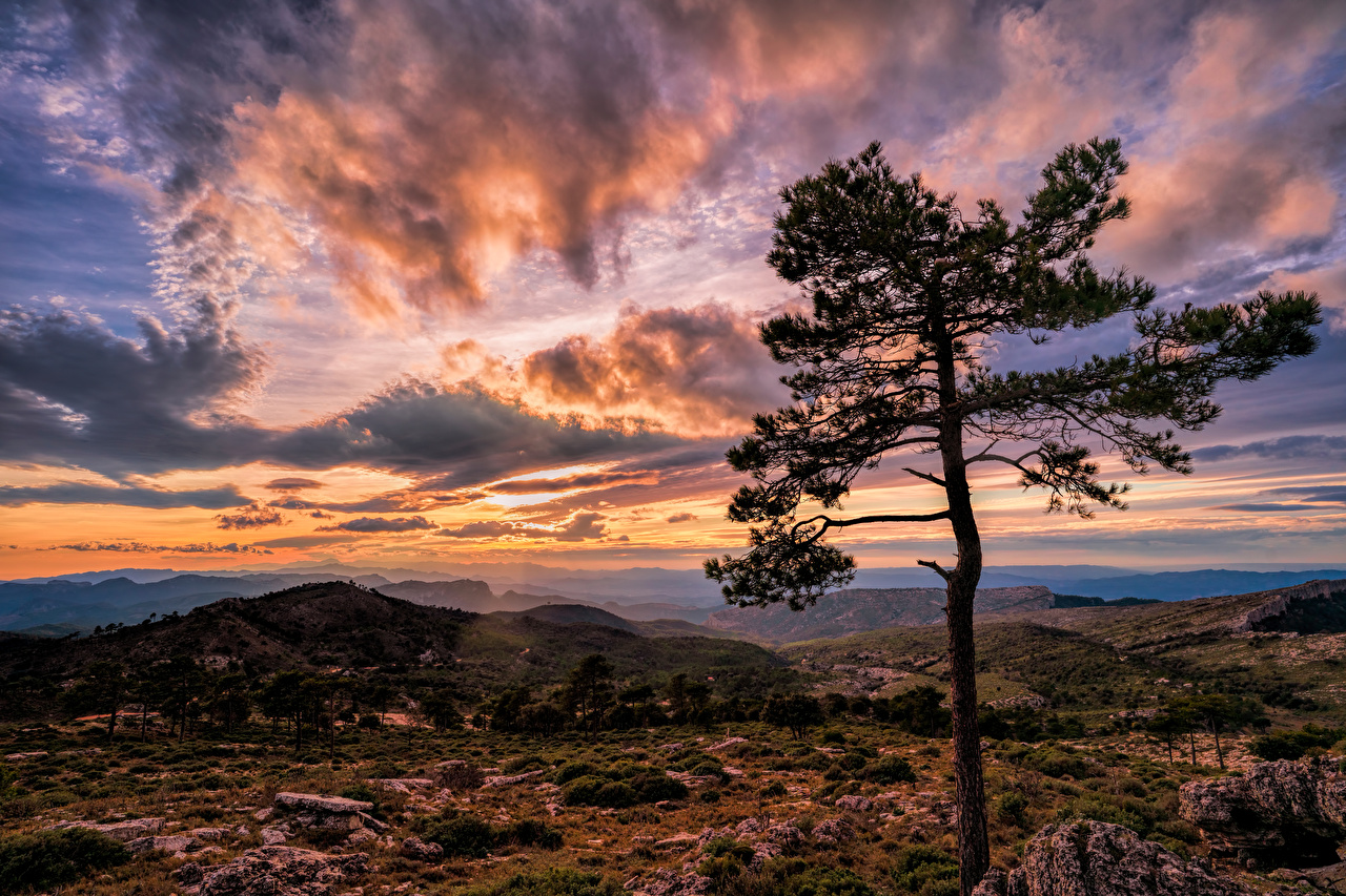 Photos Spain Catalonia Nature mountain Sky sunrise and sunset Evening Trees Clouds Mountains Sunrises and sunsets