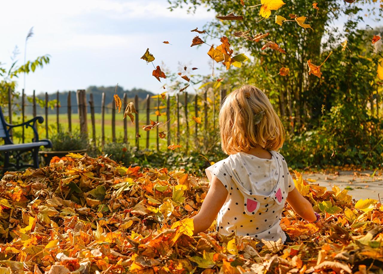 Fotos Kleine Mädchen Blattwerk Kinder Herbst Sitzend Blatt