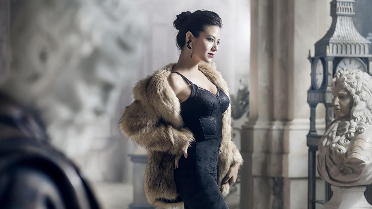 Desktop Wallpapers Brunette girl Fur coat Pose female Sculptures frock posing Girls young woman gown Dress