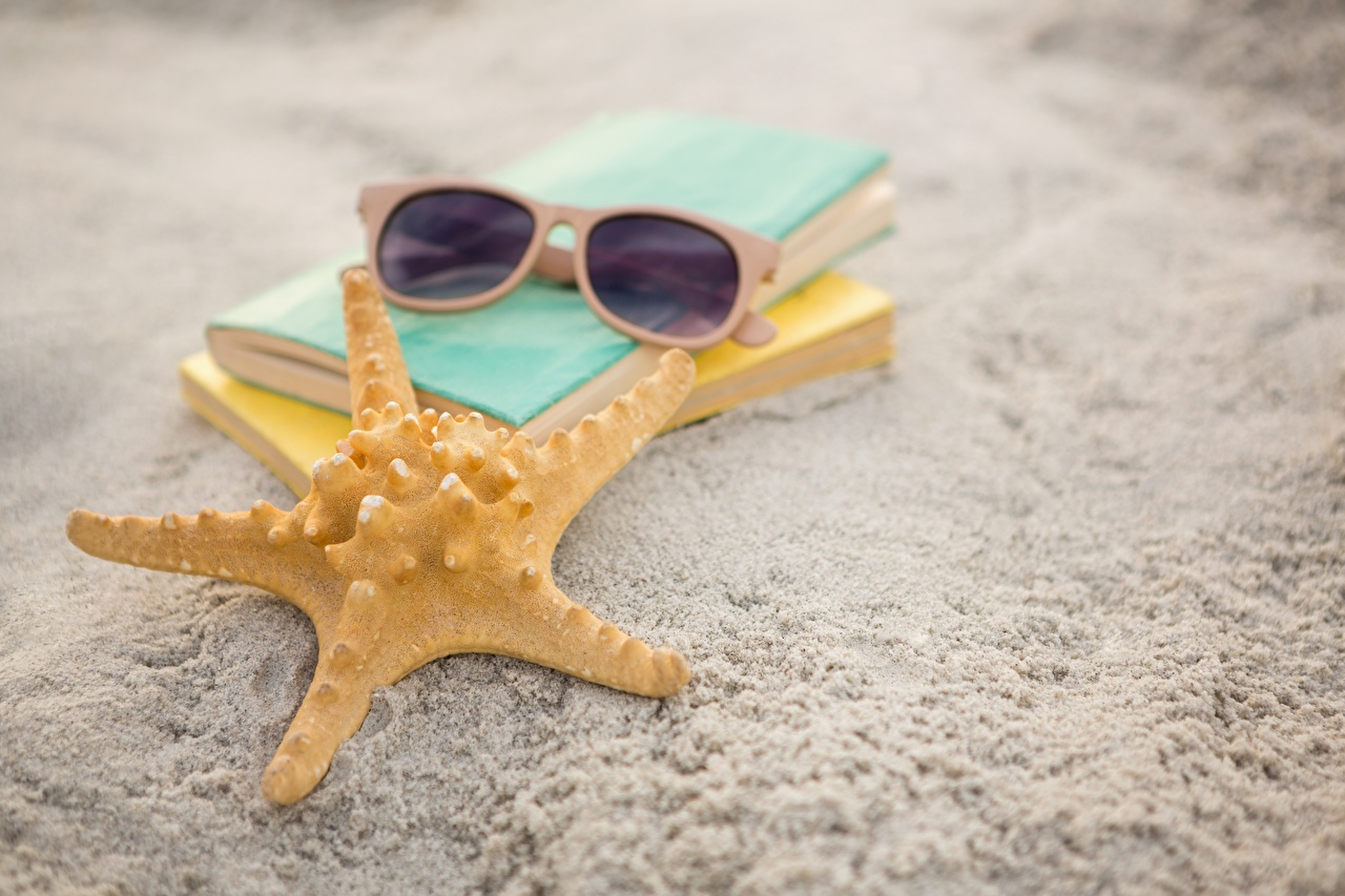 Desktop Wallpapers Starfish Sand eyeglasses Closeup sea stars Glasses