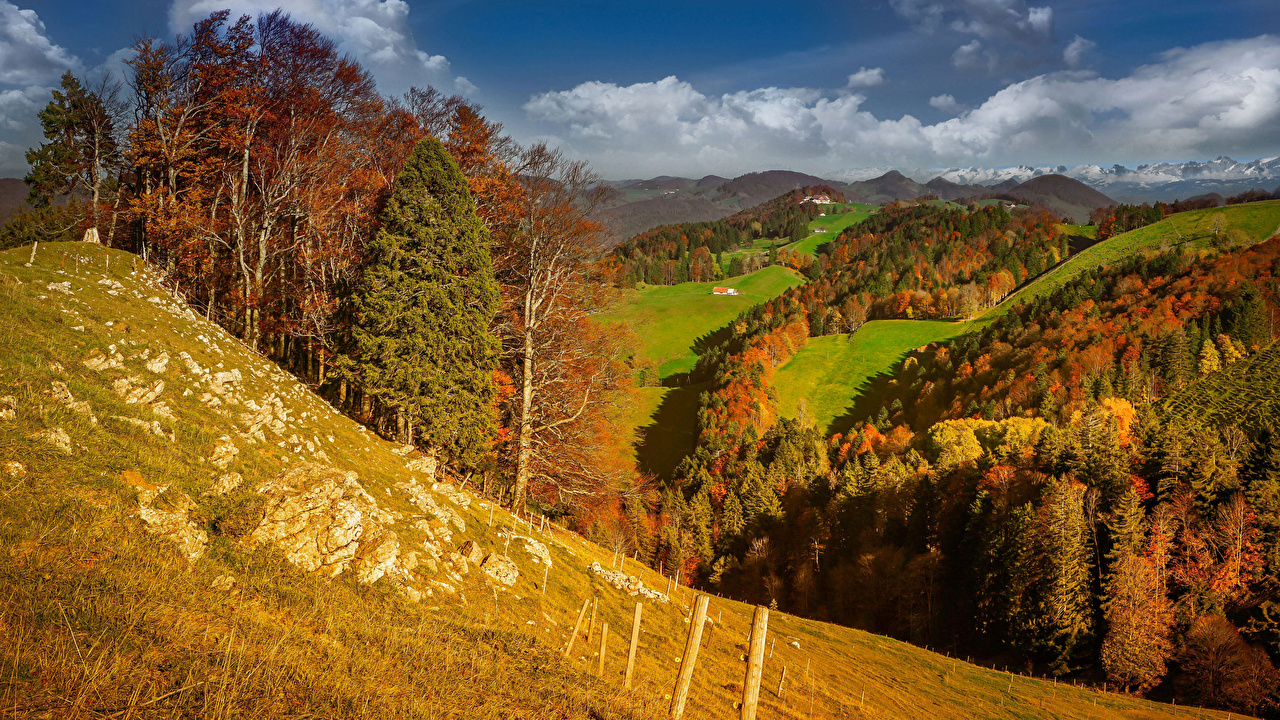 Images Switzerland Aedermannsdorf, Solothurn Autumn Nature Mountains forest Meadow mountain Forests Grasslands