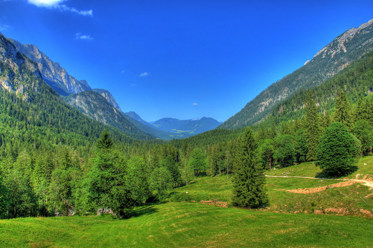 Desktop Wallpapers Bavaria Germany Nature Mountains Sky Scenery Forests Grass mountain forest landscape photography