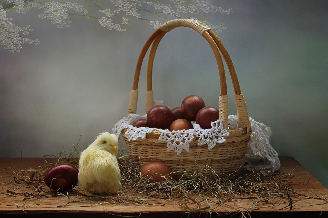 Foto Ostern Hühner Ei Weidenkorb Stroh Lebensmittel