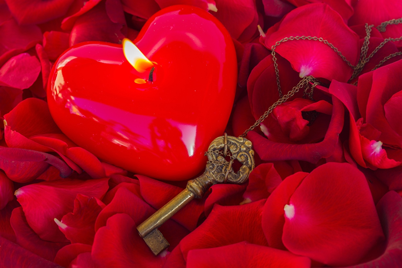 Photo rose Petals Fire Flowers Candles Key lock Closeup Roses flame flower