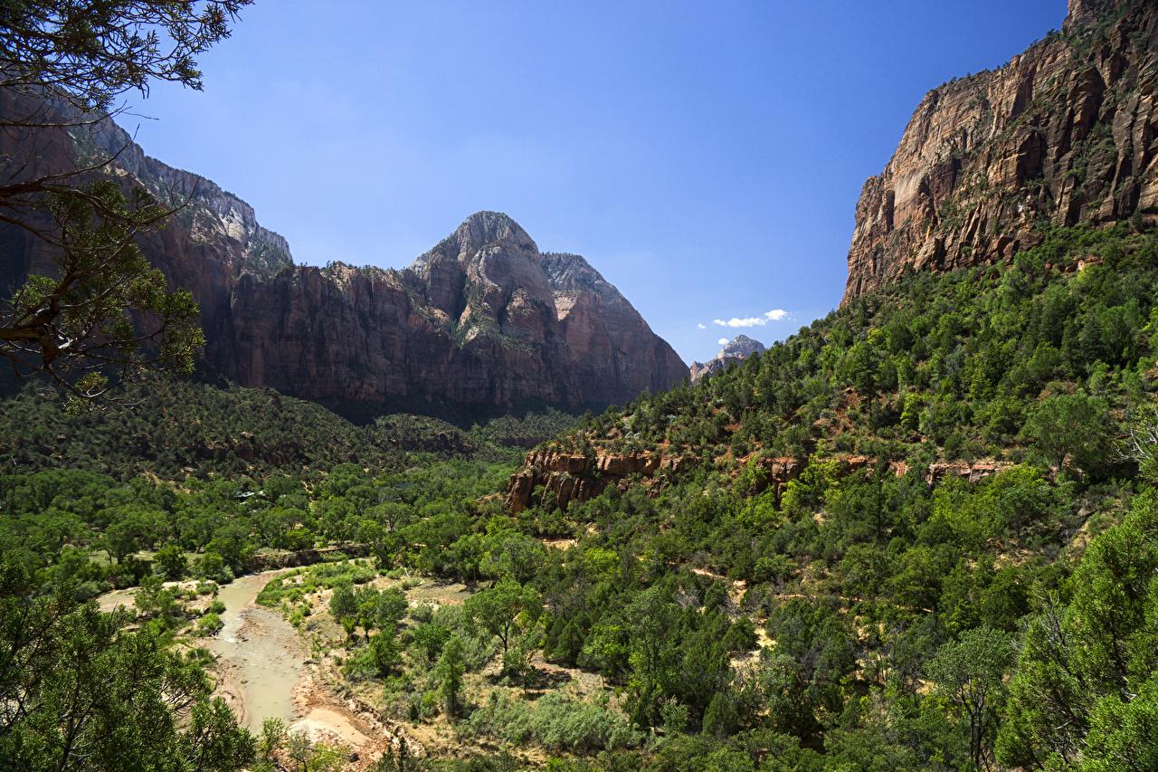 Afbeeldingen Zion National Park Amerika Bergen Natuur Parken verenigde staten berg park