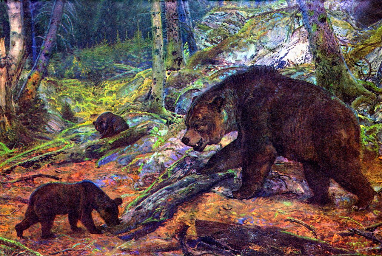 Afbeelding Zdenek Burian Beren Ursidae Dieren Oude dieren beer een dier