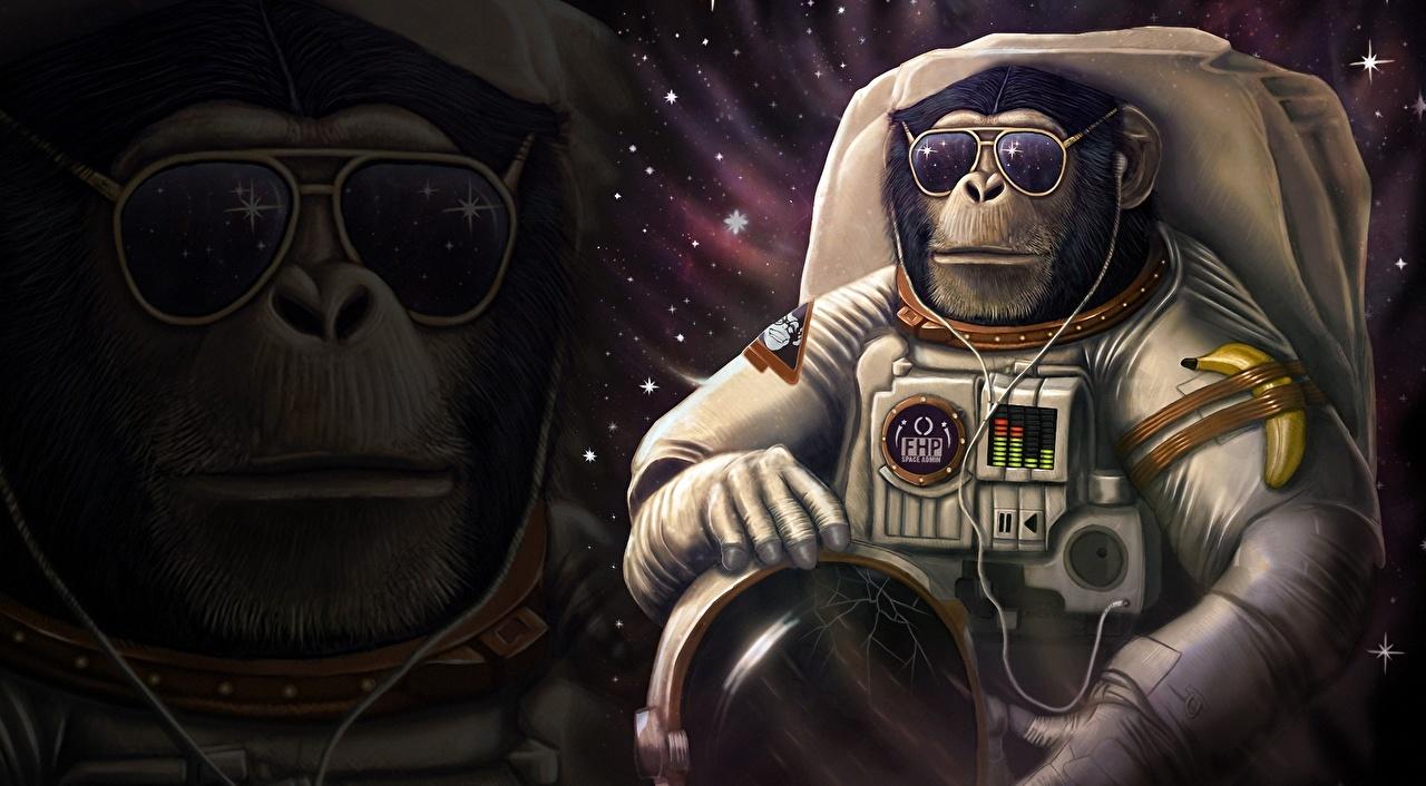Bilder Humor aper Astronautene Hjelm Fantasy Verdensrommet Briller Dyr morsomme Apekatter romfarer det ytre rom