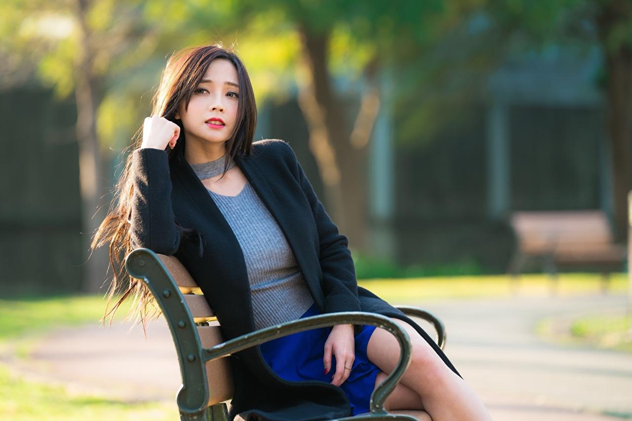 Fotos Braunhaarige Bokeh Mädchens Asiaten sitzt Bank (Möbel) Starren Braune Haare unscharfer Hintergrund junge frau junge Frauen Asiatische asiatisches sitzen Sitzend Blick