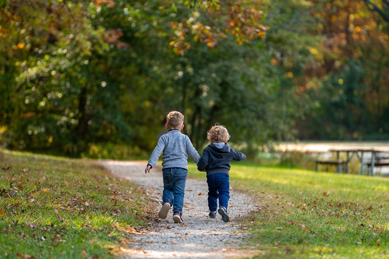 Photos Boys Foliage Bokeh child Two Trail Autumn Stroll Grass Back view Leaf blurred background Children 2 path walk Walking