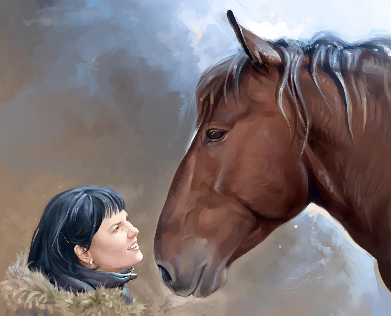 Achtergrond paard Hoofd Dieren getekende Paarden een dier Geschilderde