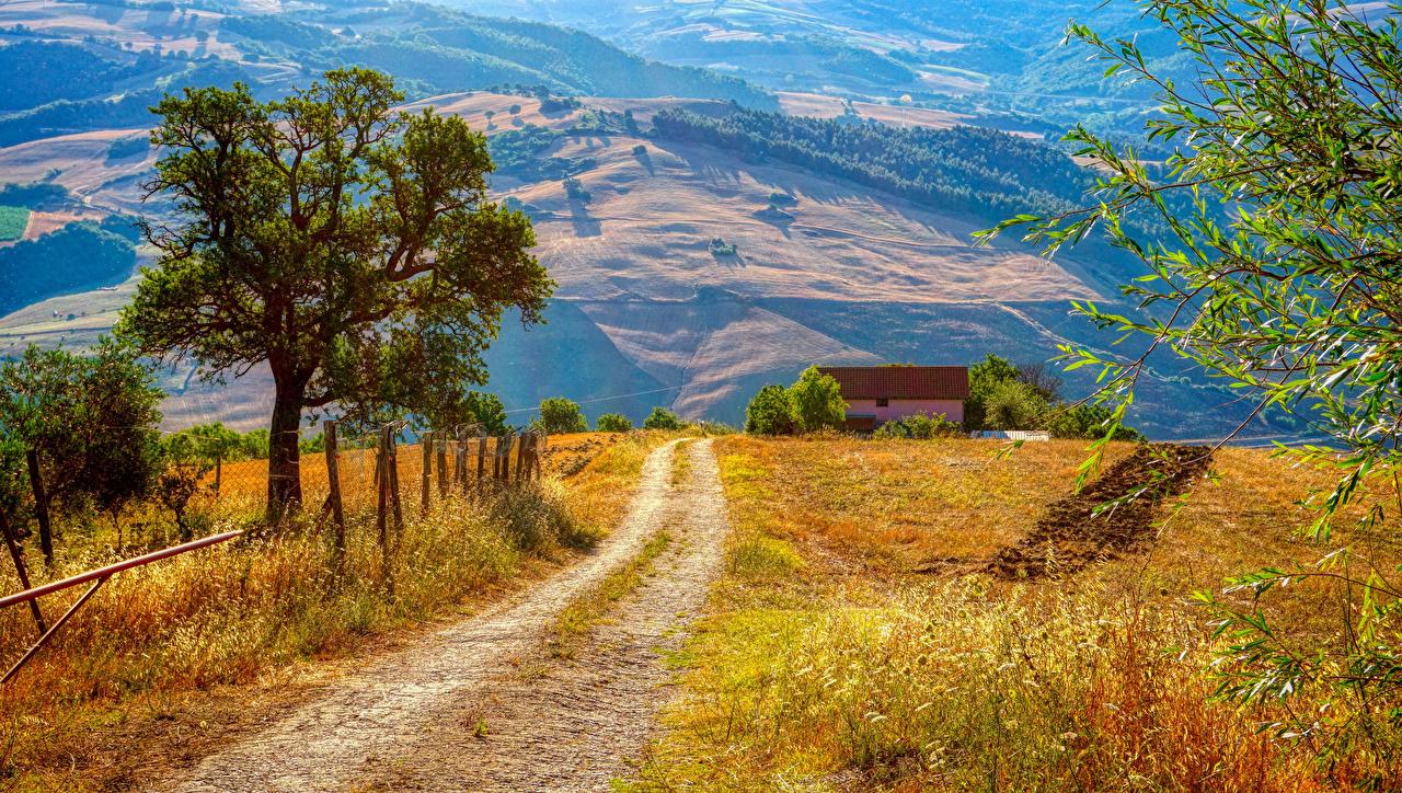 Wallpaper Italy Campania Nature Roads Trees