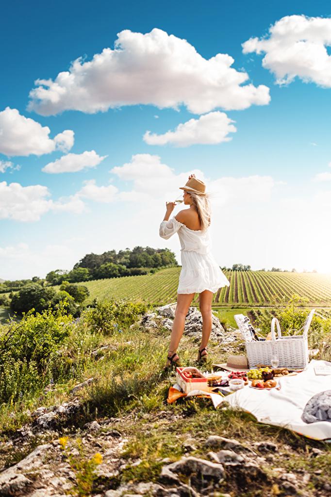 Bilder von Blondine Picknick Der Hut Erholung junge frau Gras Weinglas Wolke Kleid  für Handy Blond Mädchen Ruhen ausruhen Mädchens junge Frauen
