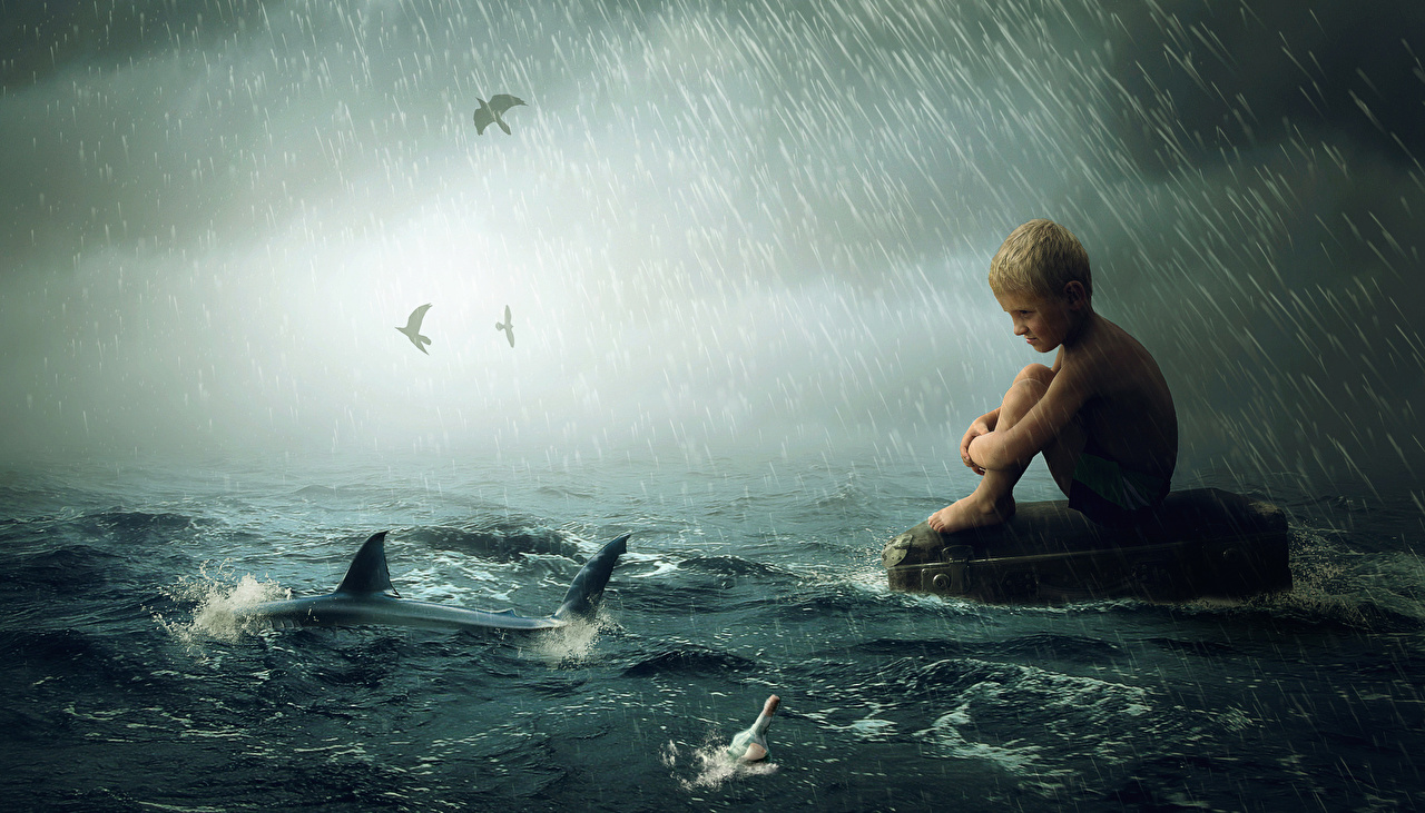 Photo Boys Sharks Children Sea Rain Waves animal child Animals
