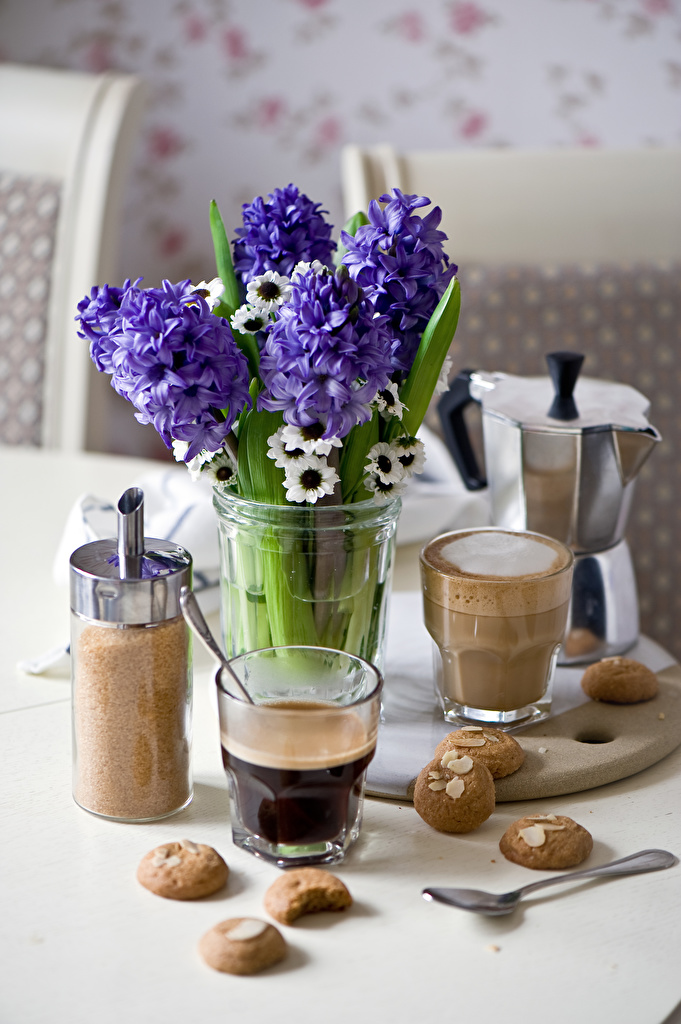Photos Coffee flower Highball glass Food Cookies Anemones Hyacinths Still-life  for Mobile phone Flowers anemone