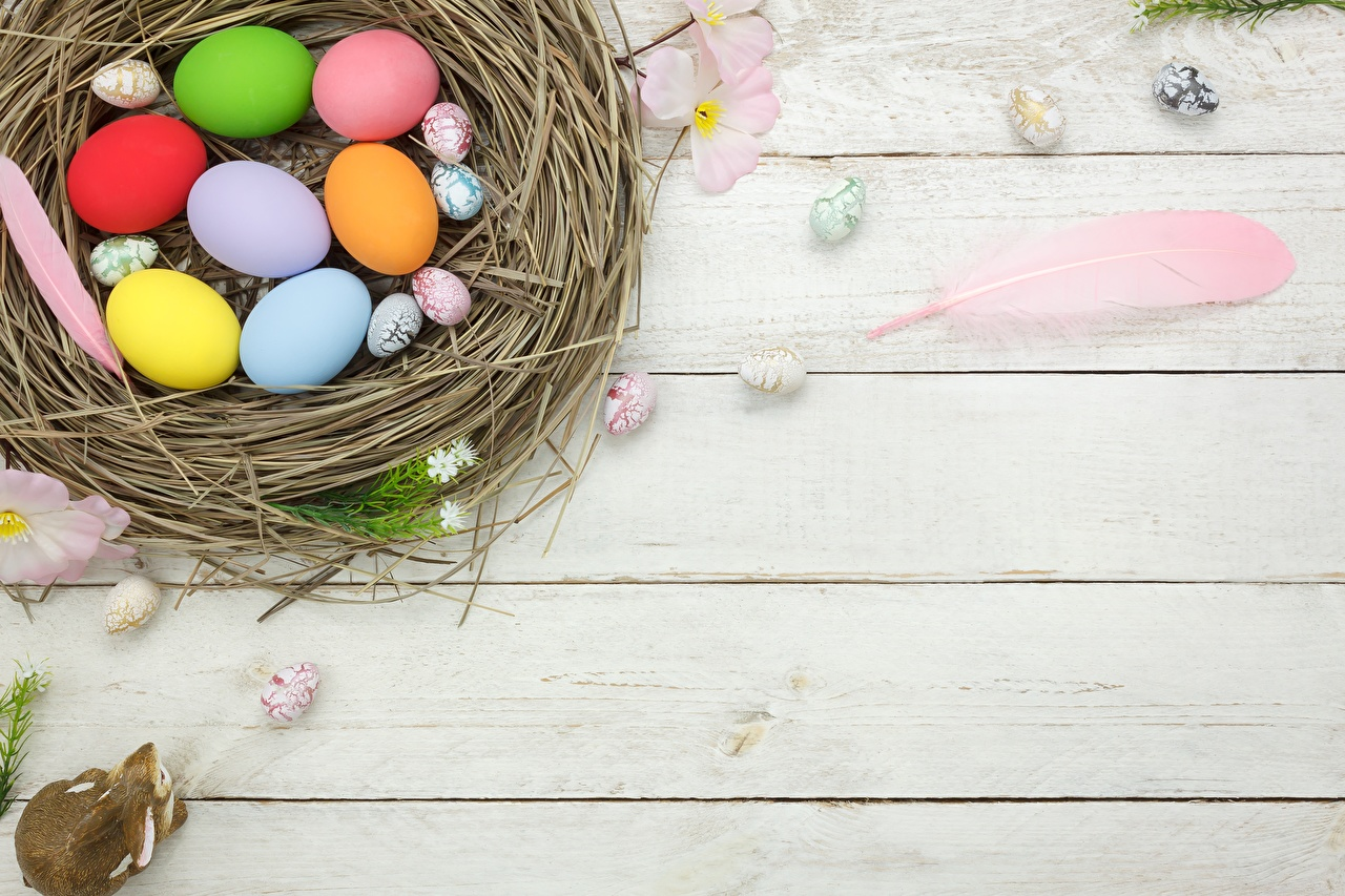 Desktop Wallpapers Easter Nest Template greeting card boards Wood planks