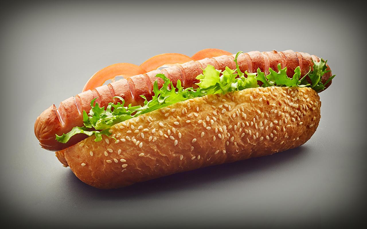Wallpapers Hot dog Buns Fast food Vienna sausage Food Closeup