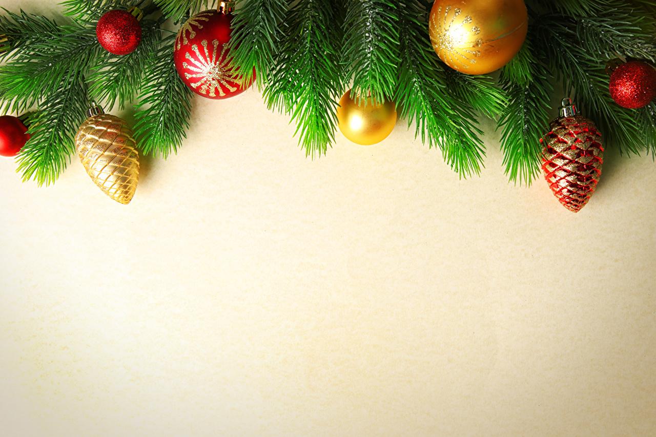 Fotos Neujahr Ast Kugeln Farbigen hintergrund