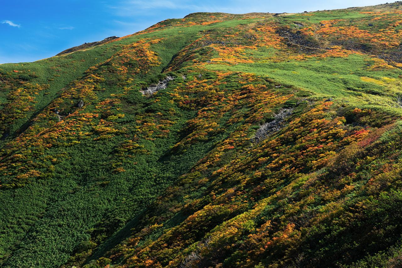 Photo Japan Mount Gassan Nature Mountains mountain