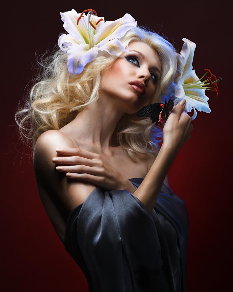 Foto Blond Mädchen Lilien Mädchens Hand Farbigen hintergrund Blondine