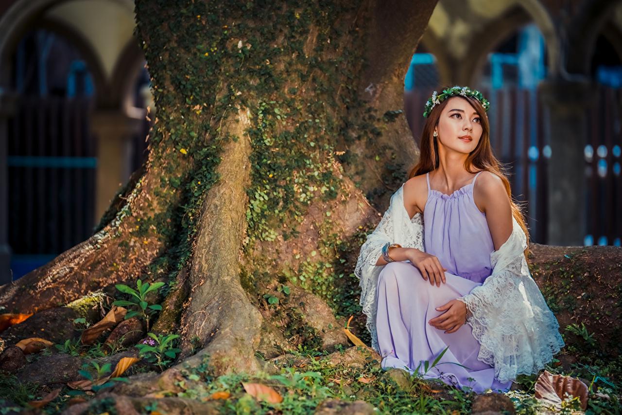 Foto Kranz junge frau Asiaten sitzt Kleid Mädchens junge Frauen Asiatische asiatisches sitzen Sitzend