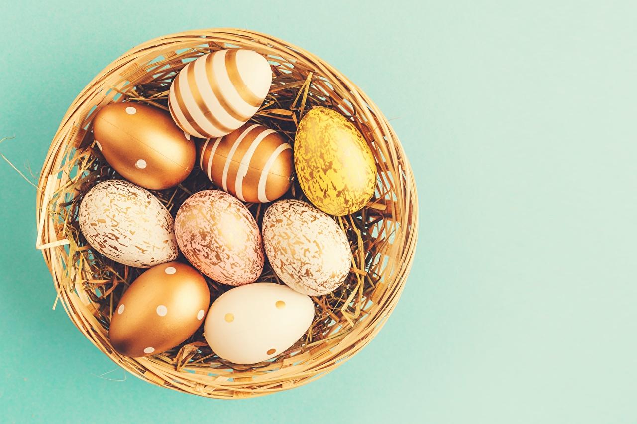 Fotos Ostern Ei Weidenkorb Farbigen hintergrund eier
