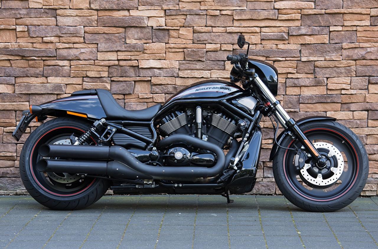 Foto Harley-Davidson VRSCDX, Night Rod Schwarz Motorrad wände Seitlich Motorräder wand Mauer