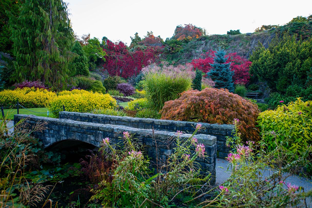 Image Vancouver Canada Queen Elizabeth Park Bridges Parks Trees Cities bridge park