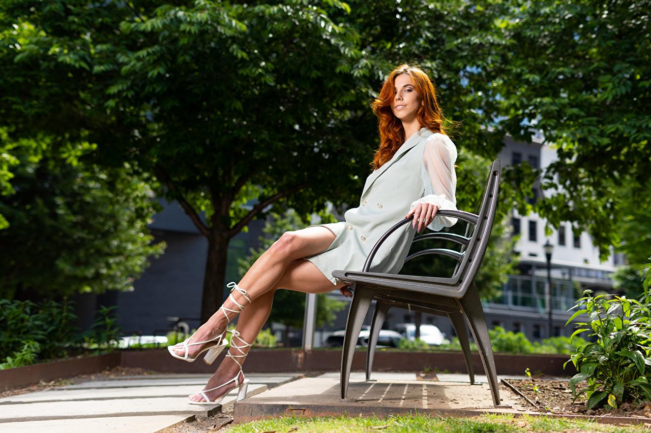 Fotos von Taylor Freeze Rotschopf Mädchens Bein Sitzend Bank (Möbel) Blick Kleid junge frau junge Frauen sitzt sitzen Starren