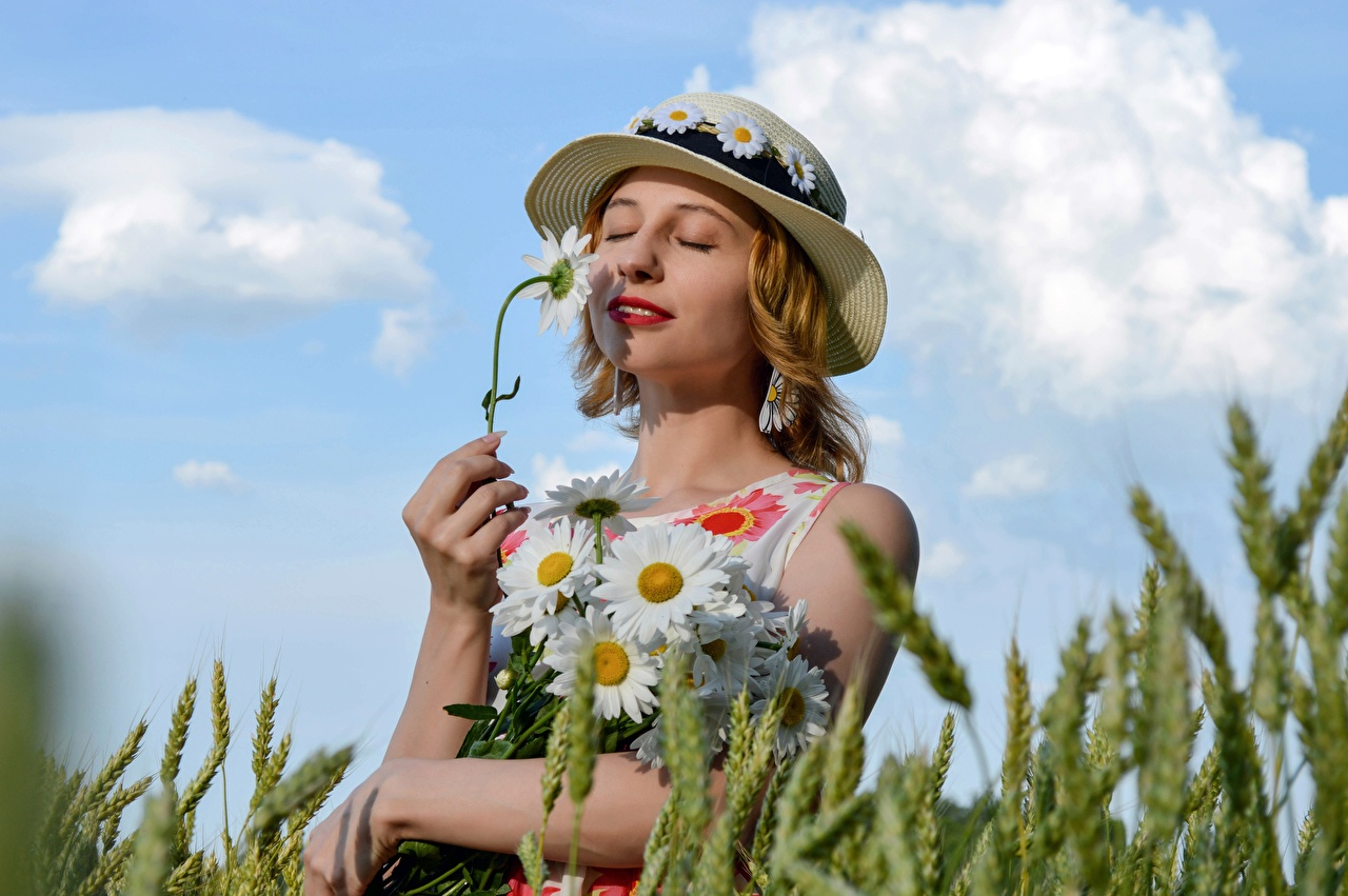 Image young woman Hat Bouquets Wheat Hands Summer Ear botany Camomiles Victoria Borodinova Blonde girl Girls female bouquet spike spikes matricaria