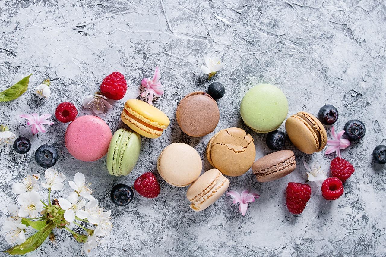 Desktop Wallpapers french macarons Raspberry Food Berry Cookies Macaron
