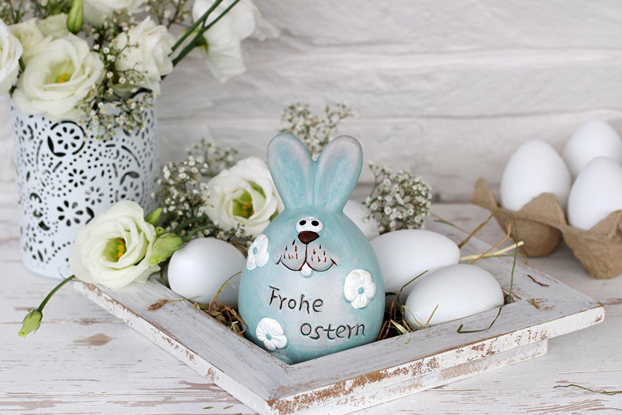 Photo Easter Rabbits German Eggs lettering lisianthus Food rabbit egg text Eustoma prairie gentian Word - Lettering