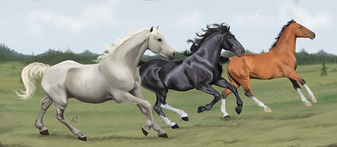 Photos Horses Run Three 3 Animals Painting Art horse Running animal