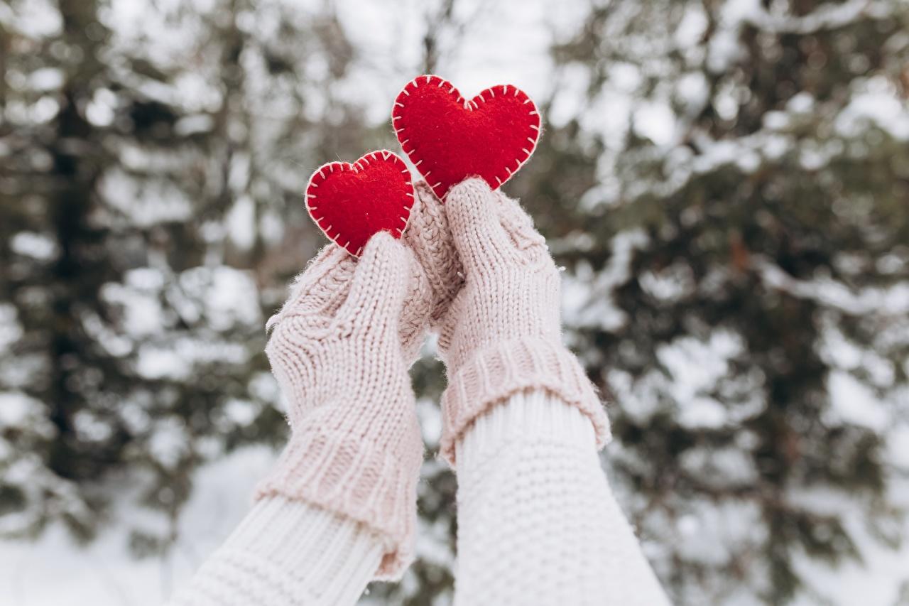 Fotos Valentinstag Fausthandschuhe Herz Zwei Hand 2