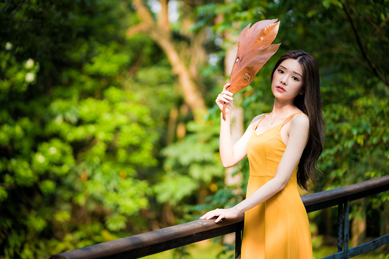 Desktop Wallpapers Foliage Bokeh young woman Asiatic Hands Staring Dress Leaf blurred background Girls female Asian Glance gown frock