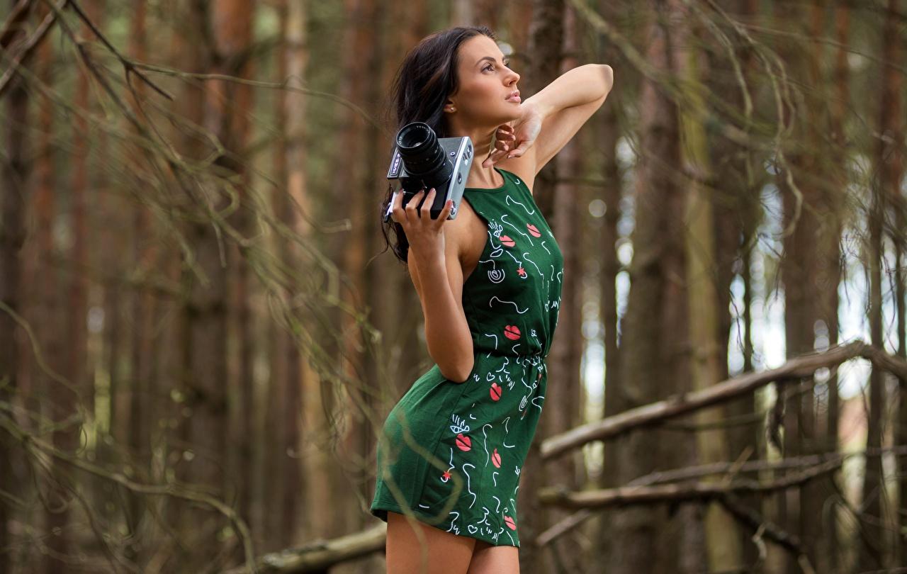 Fotos Brünette Fotoapparat unscharfer Hintergrund posiert junge Frauen Hand Kleid Bokeh Pose Mädchens junge frau
