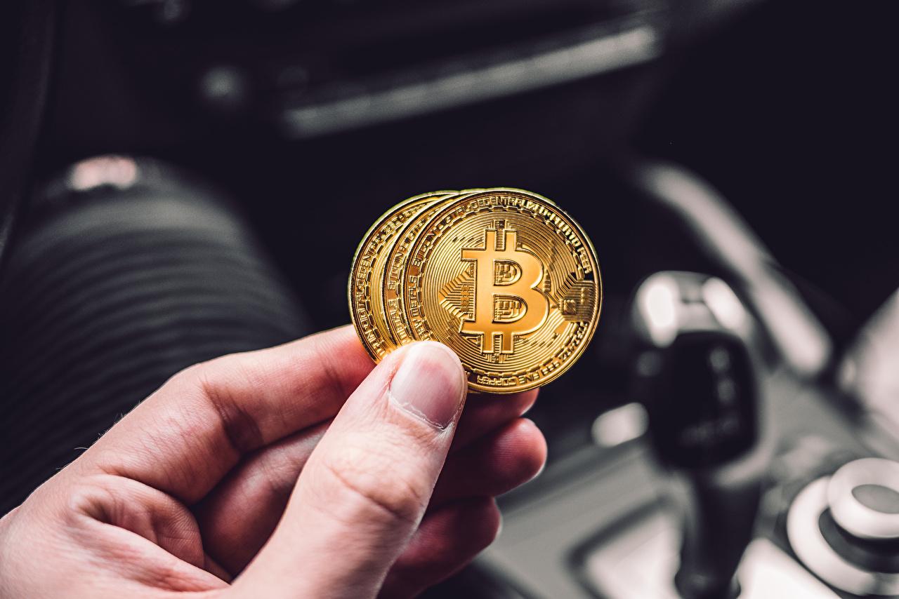Fotos Münze Bitcoin unscharfer Hintergrund Hand Geld Finger Bokeh