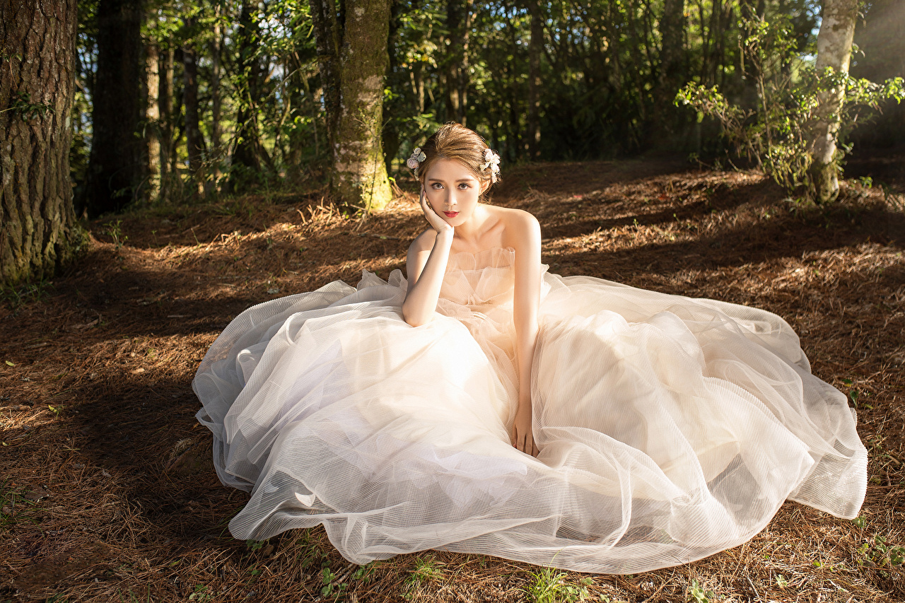 Photos brides young woman Asian Sitting Glance gown Bride Girls female Asiatic sit Staring frock Dress