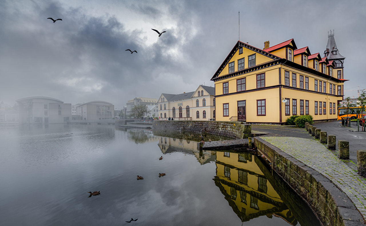 Wallpaper bird Iceland Fog Lake Waterfront Cities Building Birds Houses