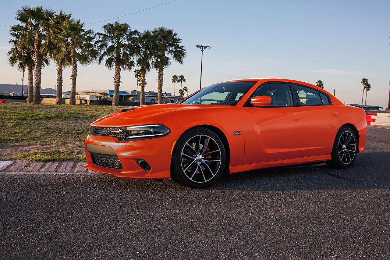 Picture Dodge Orange Cars auto automobile