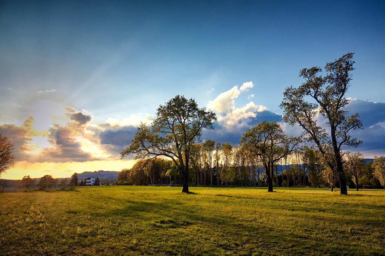 Fotos von Österreich Engerwitzdorf Natur Himmel Grünland Wolke Bäume