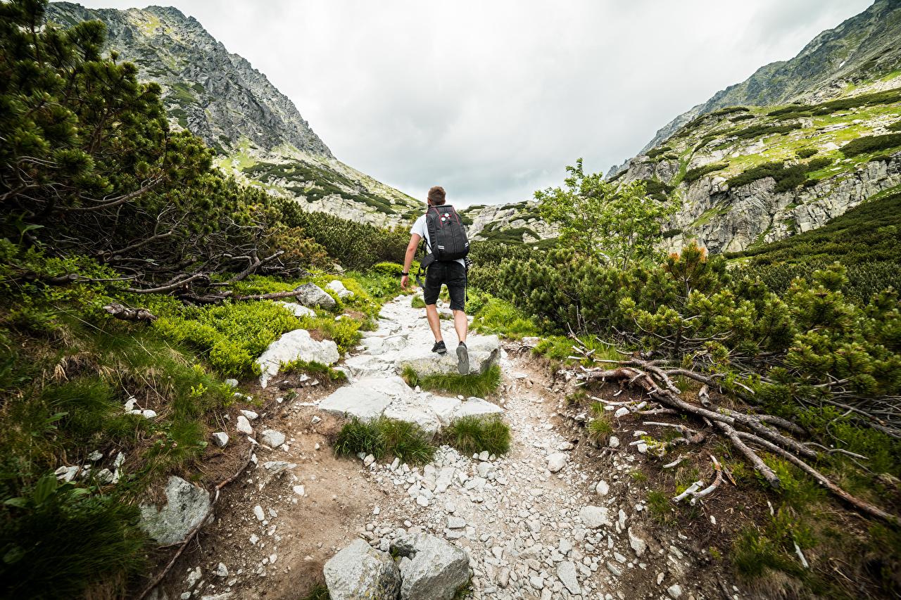 Bilder von Mann Bergsteiger Rucksack Weg Berg Natur Steine Hinten kletterer Gebirge Stein