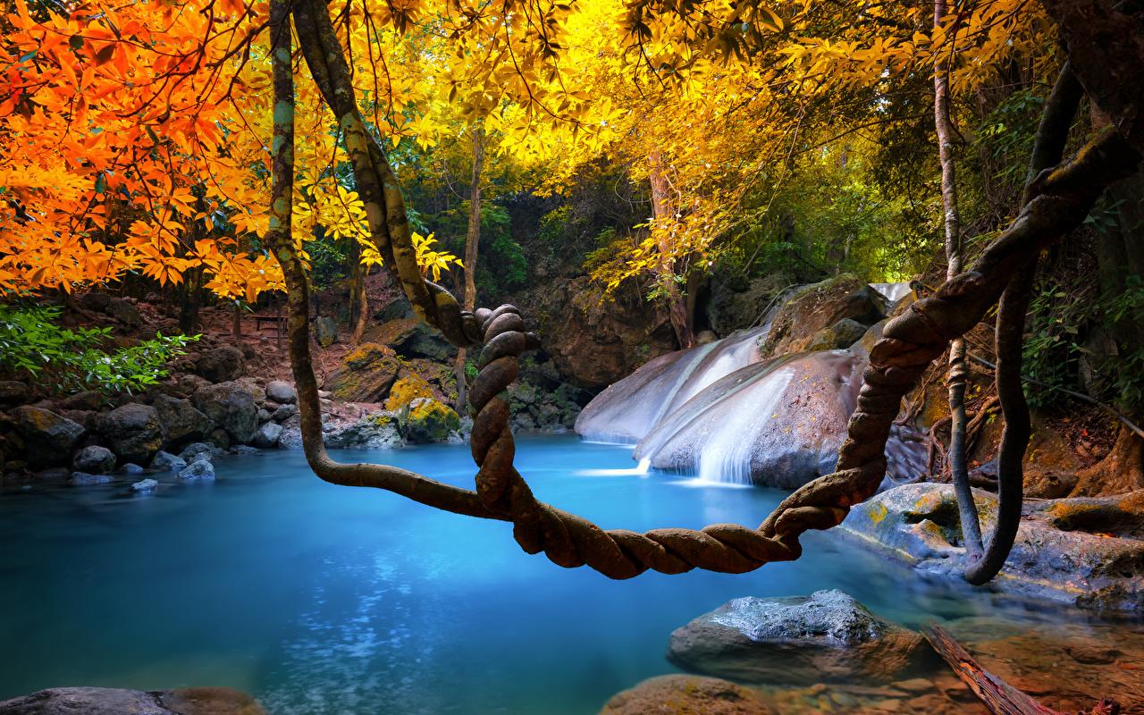 Trópico Tailândia Queda de água Outono Galho cachoeira, cascata Naturaleza