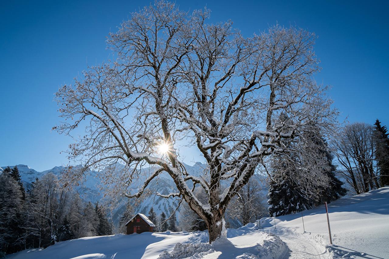 Bilder Lichtstrahl Schweiz Braunwald Natur Winter Schnee Haus Bäume Gebäude