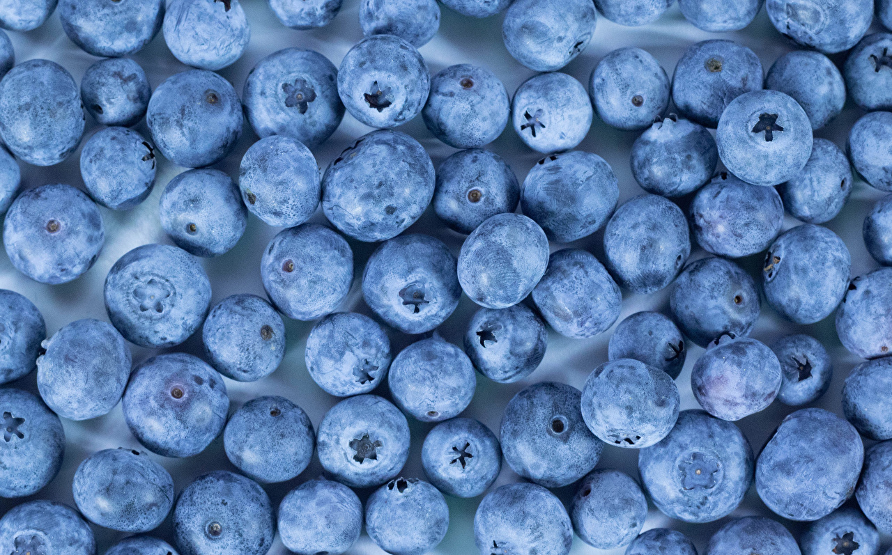 Picture Texture Blueberries Food Many