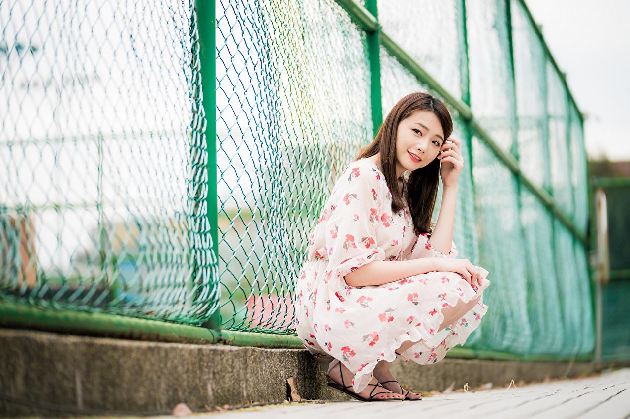 Fotos von Braune Haare junge frau Zaun Asiatische Sitzend Starren Kleid Braunhaarige Mädchens junge Frauen Asiaten asiatisches sitzt sitzen Blick