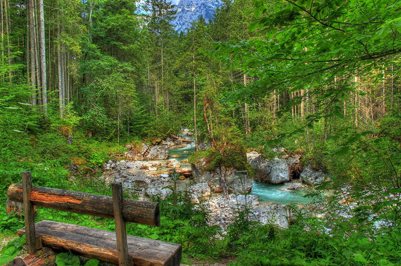 壁紙 風景写真 ドイツ 森林 川 Ramsau バイエルン州 ベンチ