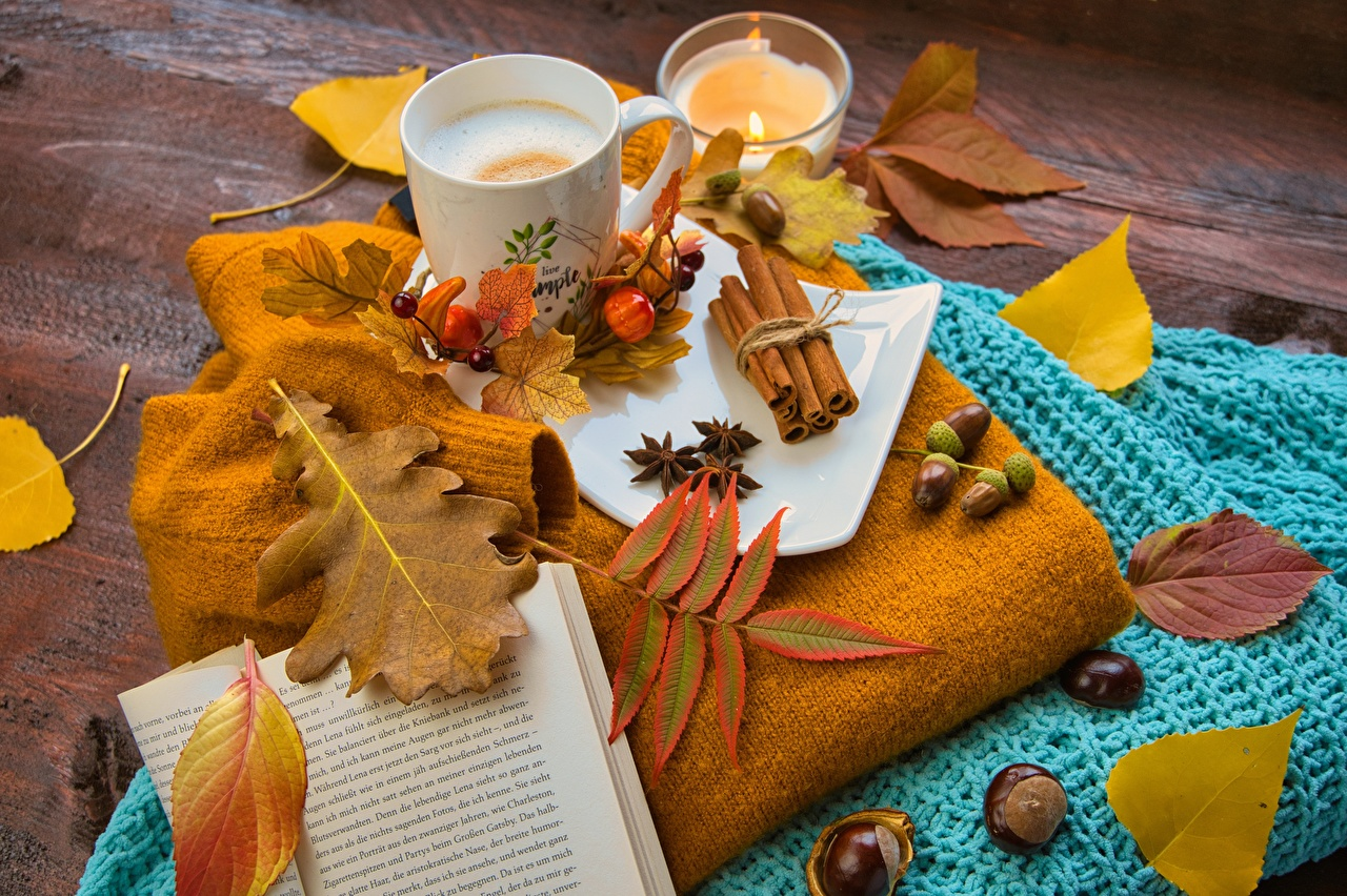 Wallpaper Foliage Acorn Autumn Coffee Nature Mug Book Nuts Leaf books