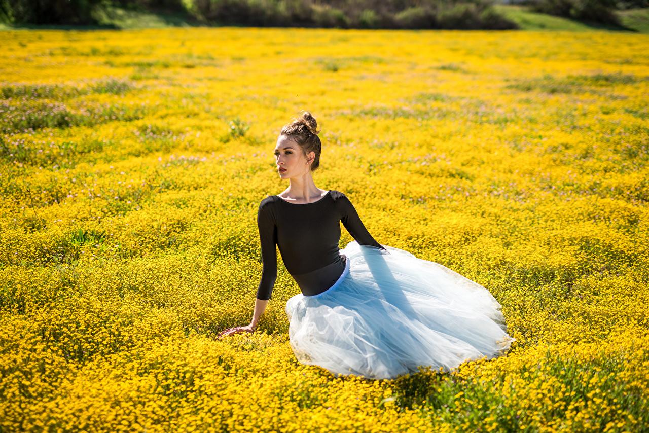 、草原、座っ、バレエ、若い女性、少女、